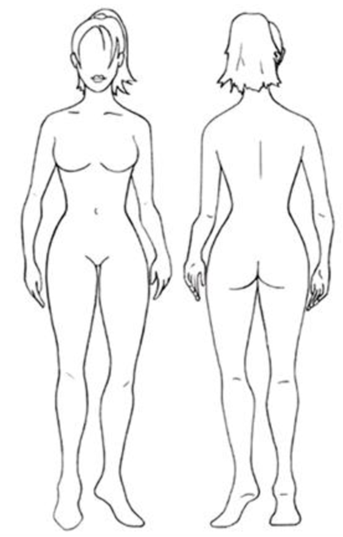 Fantastisch Anatomie Einer Frau Körper Zeitgenössisch - Menschliche ...